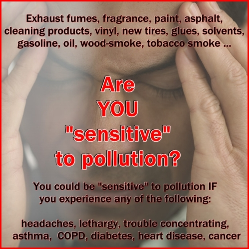 Sensitive to Pollution 2
