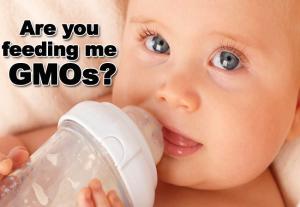 GMO Baby