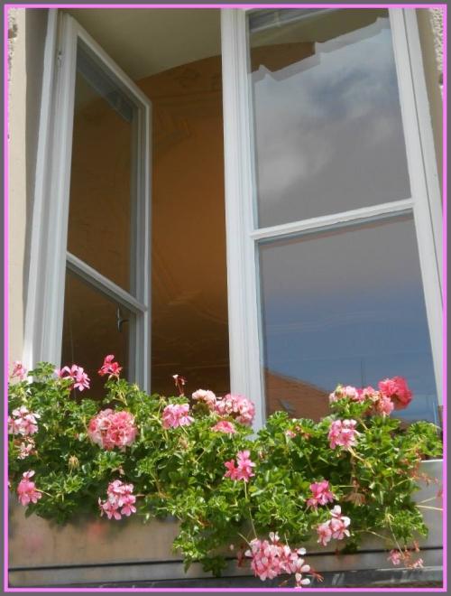Open Window  Photo by C. Howarth