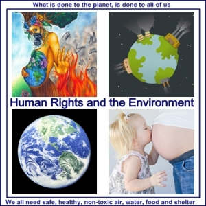 Human Rights and the Environment No More Toxic Chemical Trespass