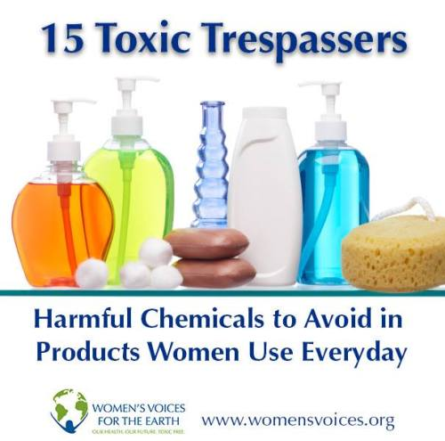 http://www.womensvoices.org/avoid-toxic-chemicals/15-toxic-trespassers/