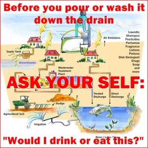Water Life Cycle ASK yourself