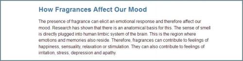 Fragrance Industry how fragrances affect mood