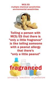 peanut fragrance 2
