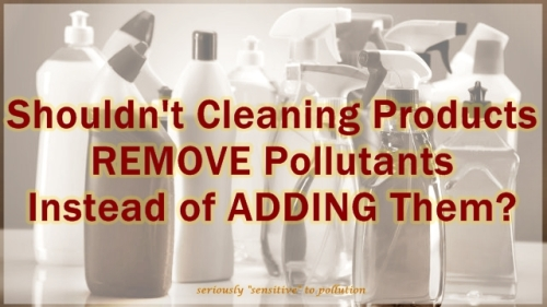 cleaning pollution 1