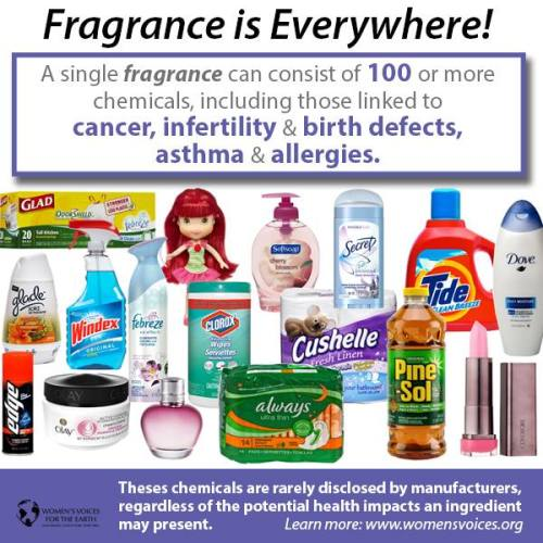 A few of the products that secret, toxic, fragrance chemicals are hiding in