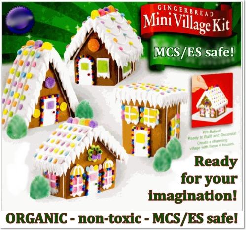 MCS ES gingerbread village kit 2