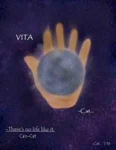http://can-cat.deviantart.com/art/Vita-587745611
