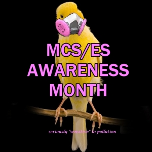 may is mcs es awareness month