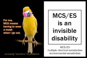 mcs es invisible disability framed